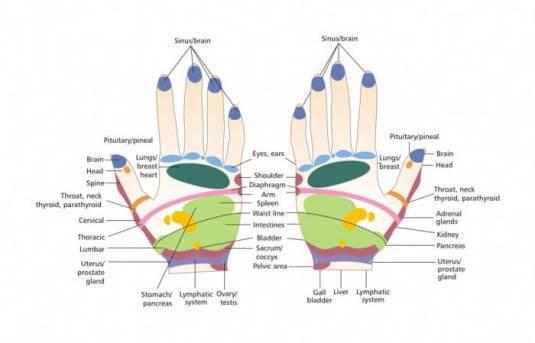 reflexology-hand